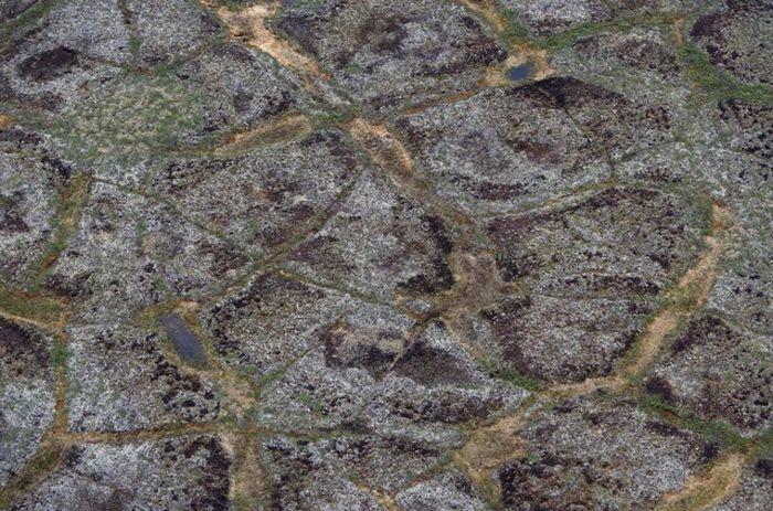 Бескрайняя тундра за Северным полярным кругом.