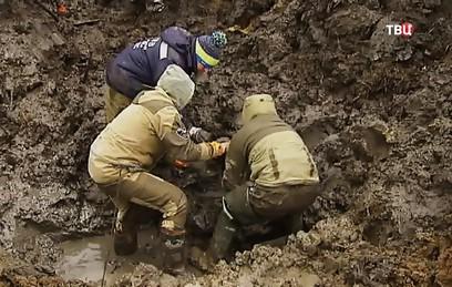 Советский бомбардировщик с телом радиста подняли из болота в Приморье