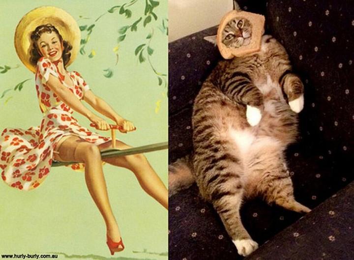 pinupcats18 Кошки и девушки в стиле пинап