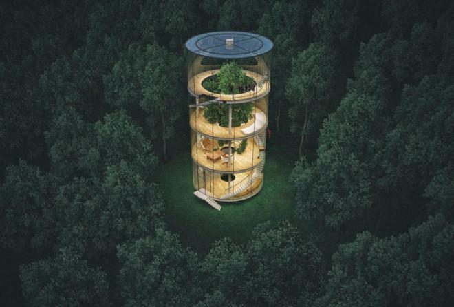 Cтеклянный дом в виде… трубы вокруг дерева