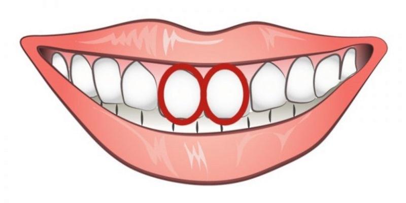 Чтобы обнаружить эгоиста достаточно просто взглянуть на его зубы!
