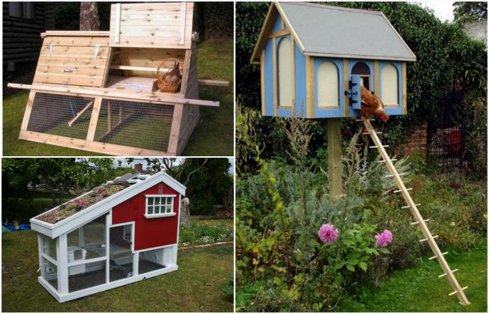 Интересные идеи дизайна комфортного курятника в собственном дворе.