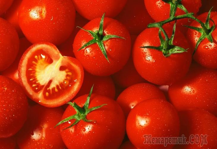 Сроки созревания урожая: ускоряем процесс