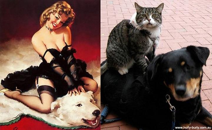 pinupcats16 Кошки и девушки в стиле пинап
