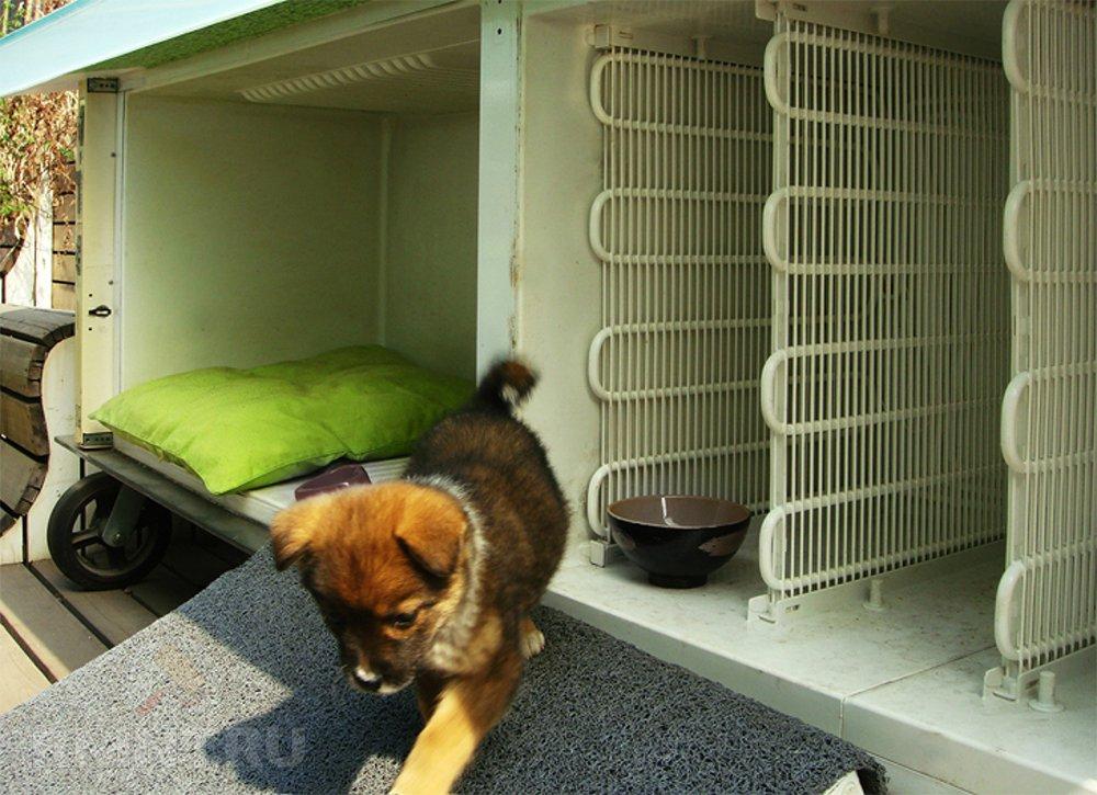 Собачья будка из холодильника