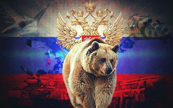 Западу объяснили, почему Россия всегда побеждает своих врагов