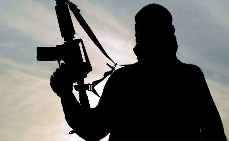 Иракские военные раскололи бармалея ИГ из Ростова-на-Дону
