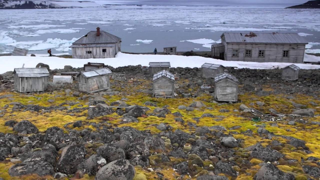 Президент РФ прибыл в Арктику, чтобы оценить проделанную работу по уборке региона