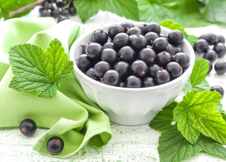 Описание лучших сортов черной смородины