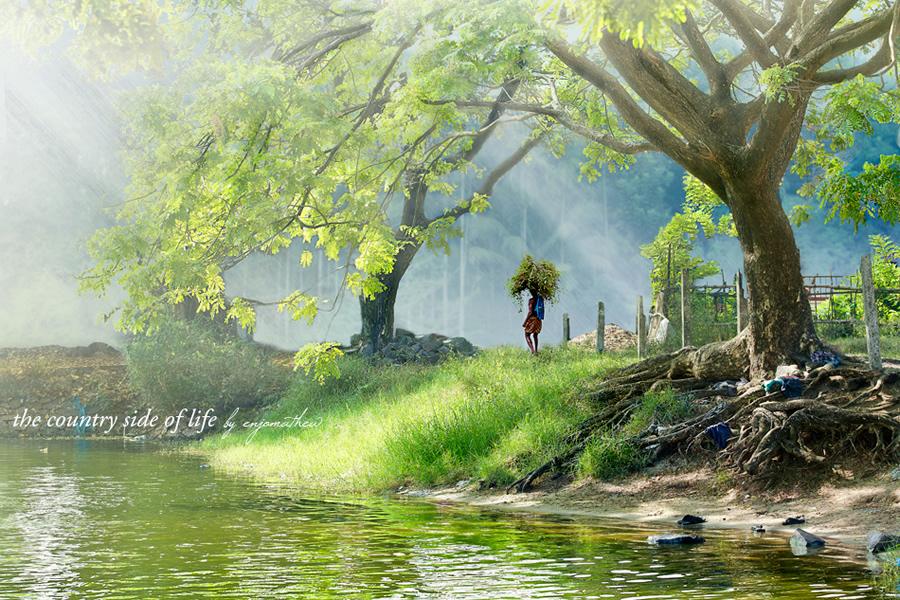 Eternal Sunshine Art Works by Enjo Mathew