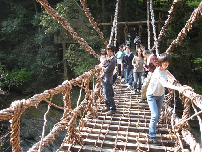 Vine Footpaths AKA Bridges