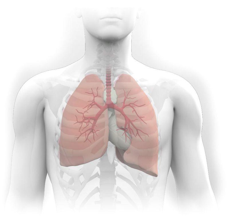 7 упражнений для восстановление после вирусных заболеваний и пневмонии