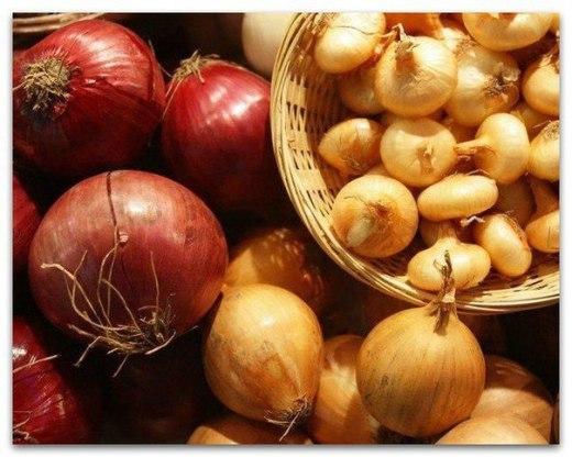 Луковая шелуха – целительное средство для растений.