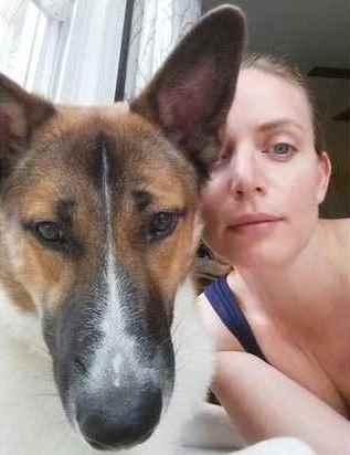 Девушки вывозят бездомных собак из России в США и находят им хозяев