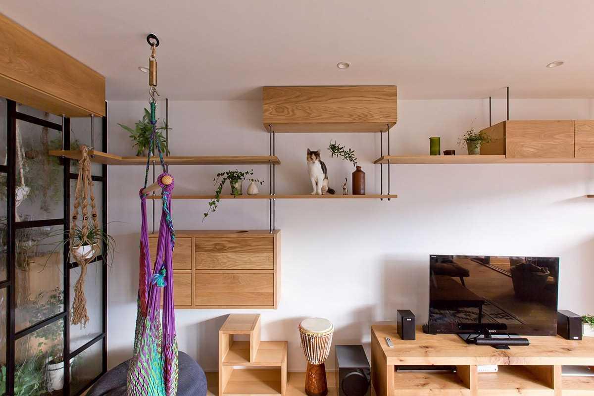 Преврати свою квартиру в рай для любимой кошки!