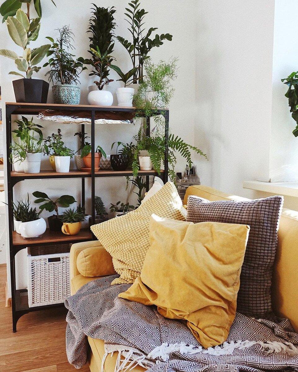 Цвет штор и дивана: надо ли сочетать? Показываем удачные варианты для любой гостиной