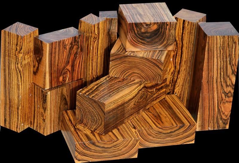 Бокота – 33000 долларов за досковый фут (0,00236 кубических метра) дерево, факты, фото