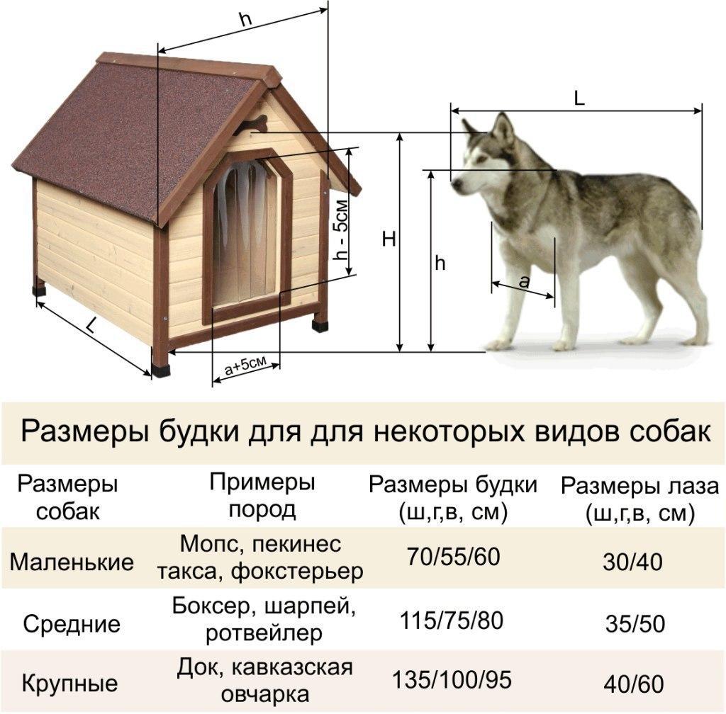 Собачья будка своими руками