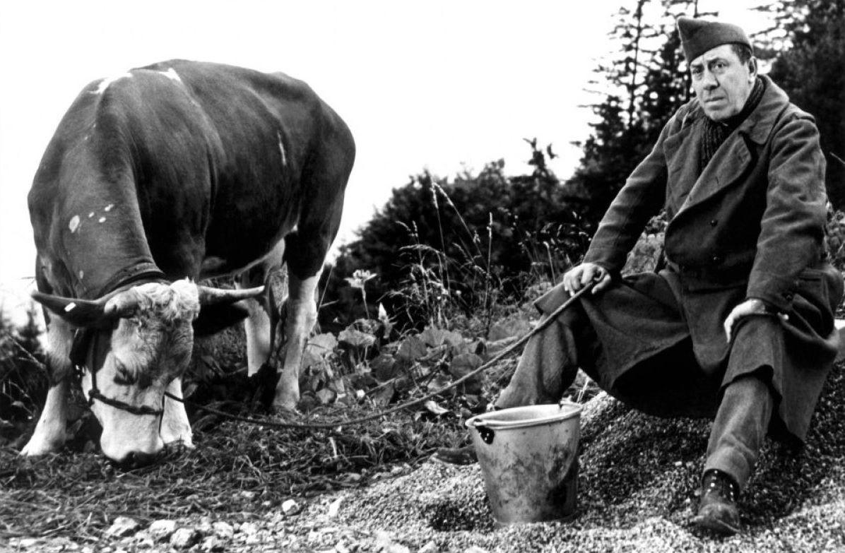 С коровой - через всю Европу: история одного побега из немецкого плена