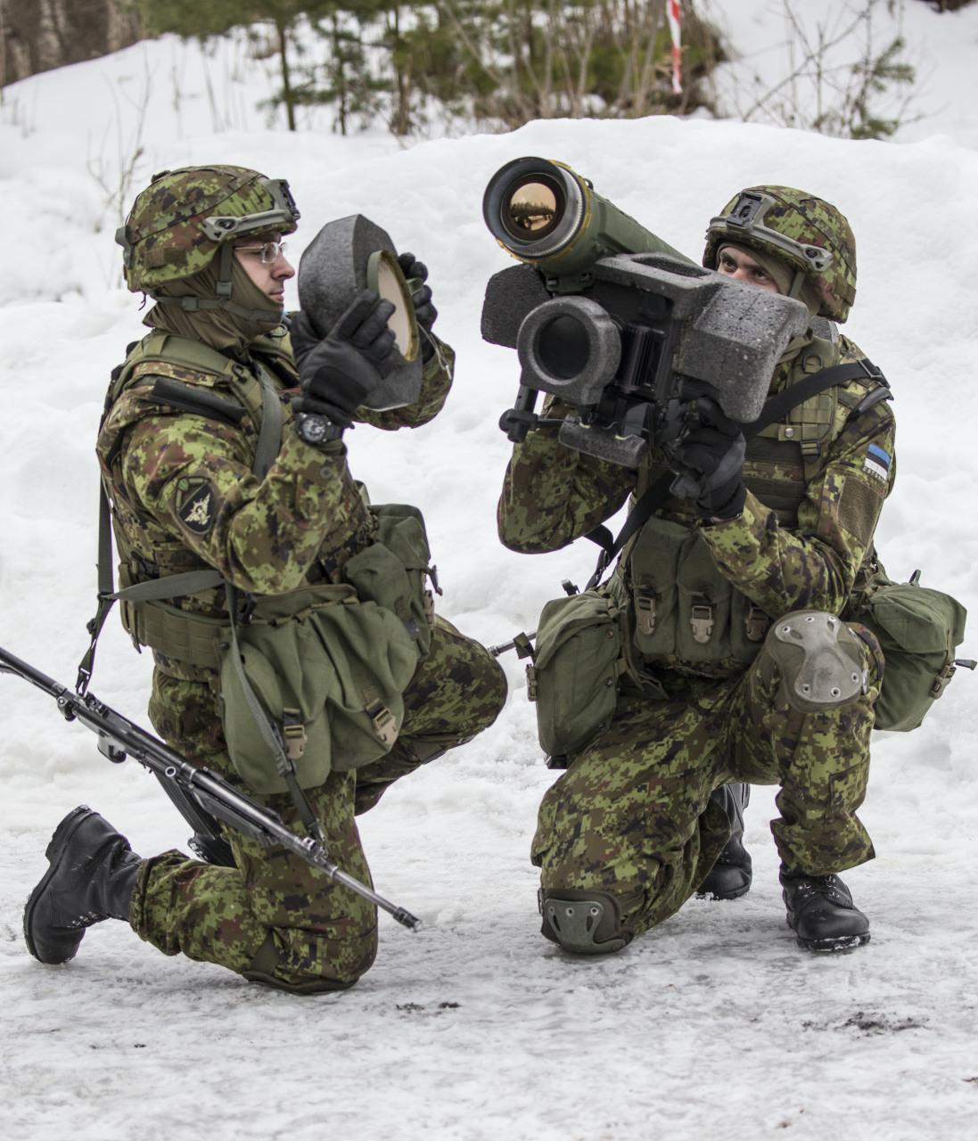 Одобрена поставка американских противотанковых ракетных комплексов Javelin в Грузию