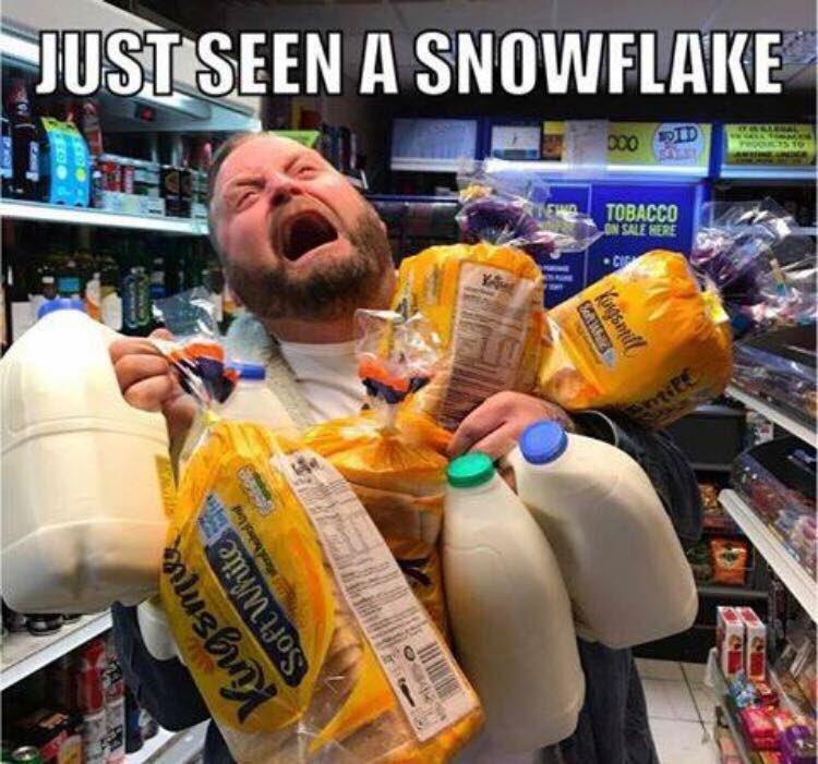 «Я видел снежинку»: британцы паникуют из-за снега в Лондоне