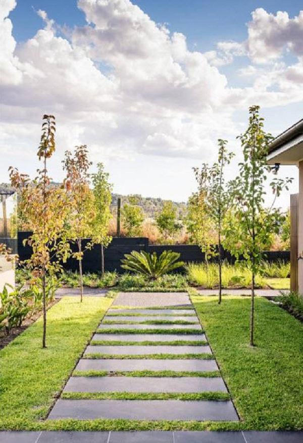 Идеальная красота зеленого дворика: лишь травы, кусты да дорожки!