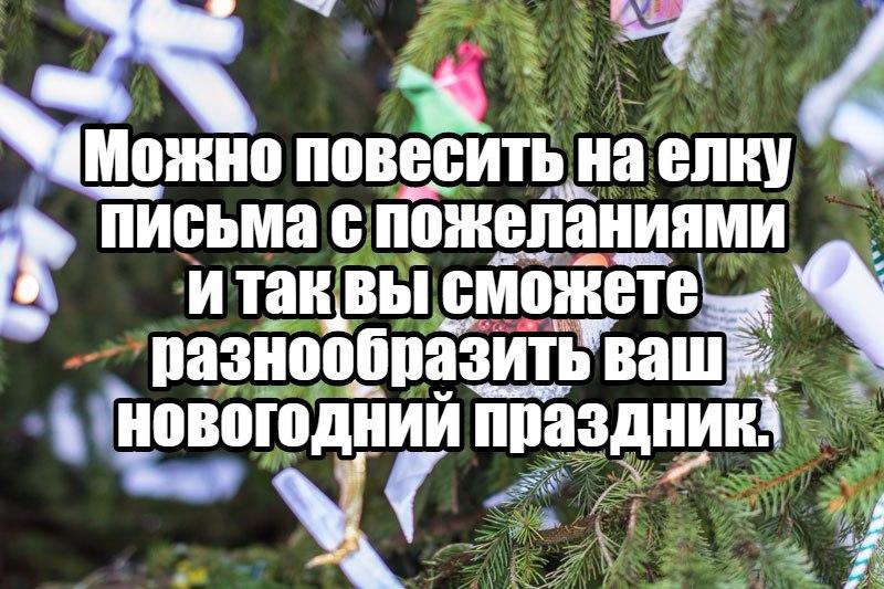 Запись за 21.12.2017 11:00:00 +0200
