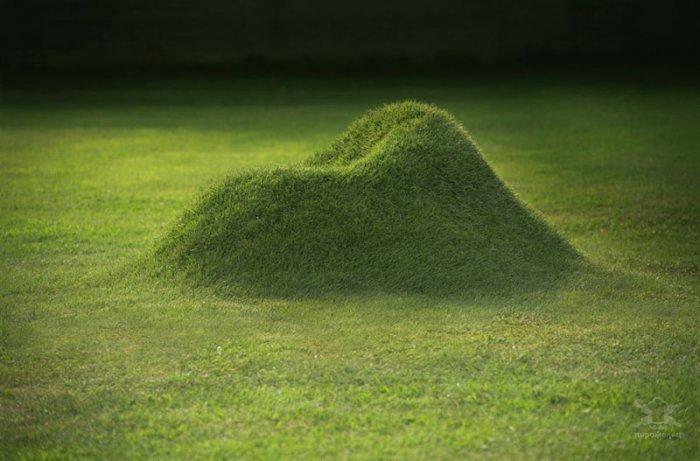 Травяное кресло TERRA: вырасти свой холмик для раздумий