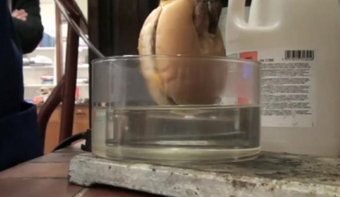 Вот во что превращается гамбургер из «Макдоналдса» в нашем желудке!