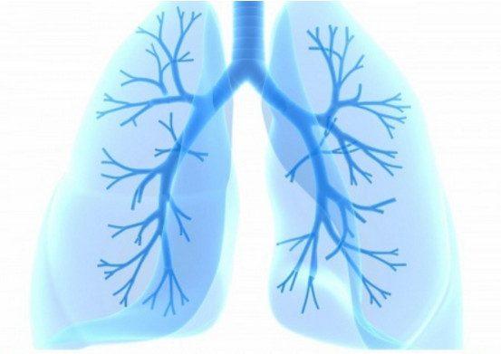 Как очистить легкие за 3 дня после курения?