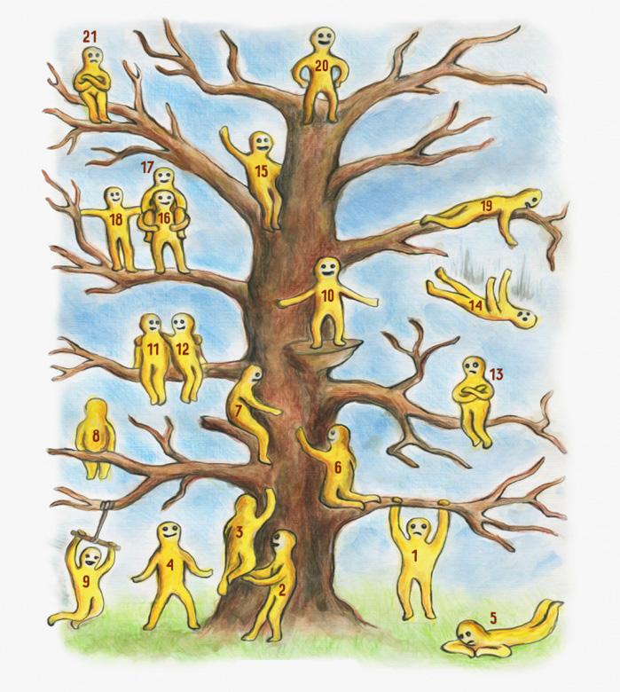 Где вы на этом дереве? Быстр…