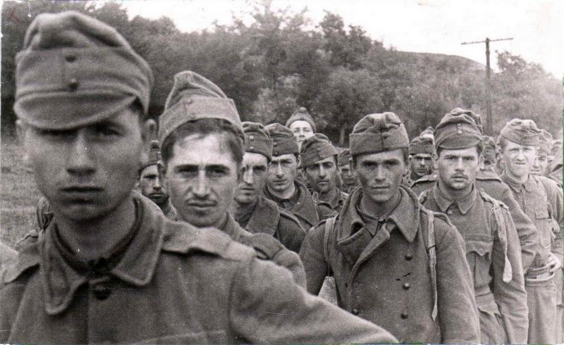 Как французские солдаты оказались в советском плену