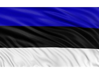 Эстония должна принести России извинения за преступления Тартуского мира
