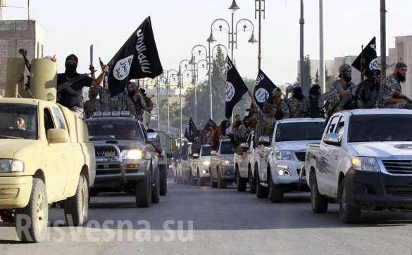 СРОЧНО: ВКС России уничтожили огромную колонну ИГИЛ в Сирии — впечатляющие кадры (ВИДЕО)