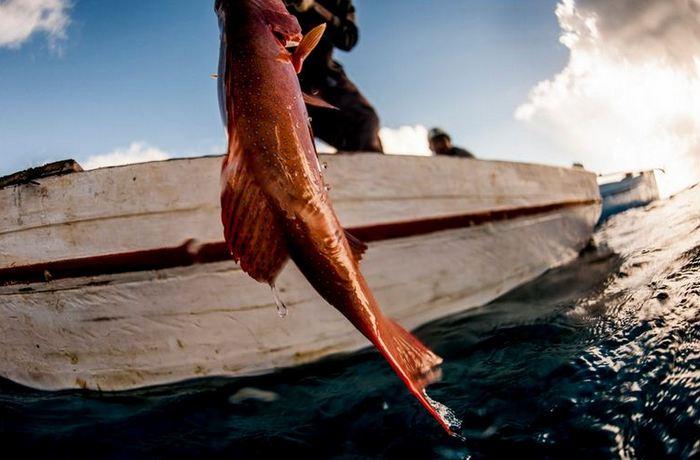Ловля рыбы с лодки.
