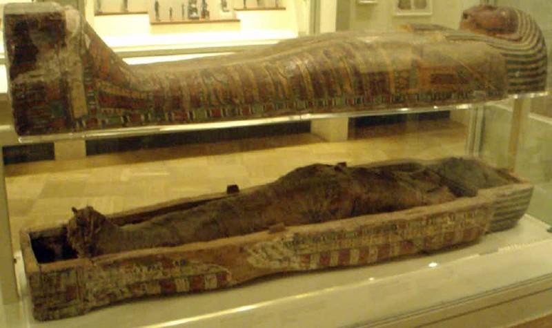 Лечение многих болезней: выписываем порошок из мумий для приема внутрь медицина прошлого, медицинские истории