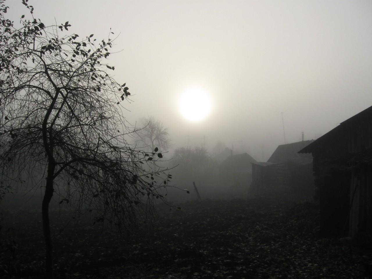 Мир вокруг нас: почему-то  ранней весной  вспоминается осень