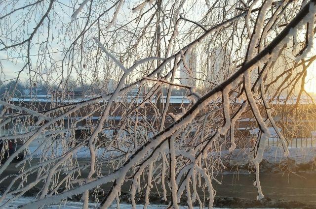 Ночь на понедельник стала самой холодной в Москве с начала зимы
