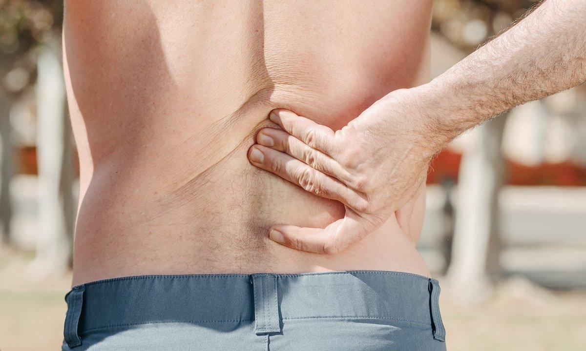 Мелатонин защищает от повреждения почек, вызванного ожирением и диабетом