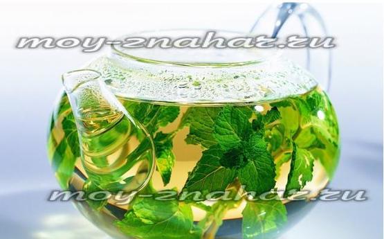 Польза и вреде чая из листьев смородины