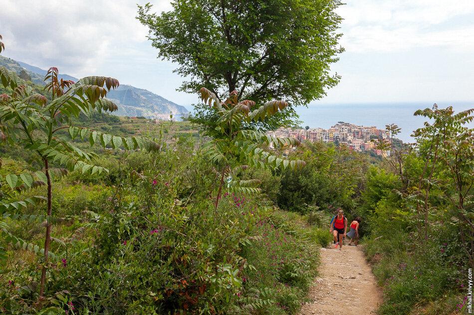 19. Мы его быстро проскочили и пошли пешком к следующему городу — Вернацца (Vernazza).