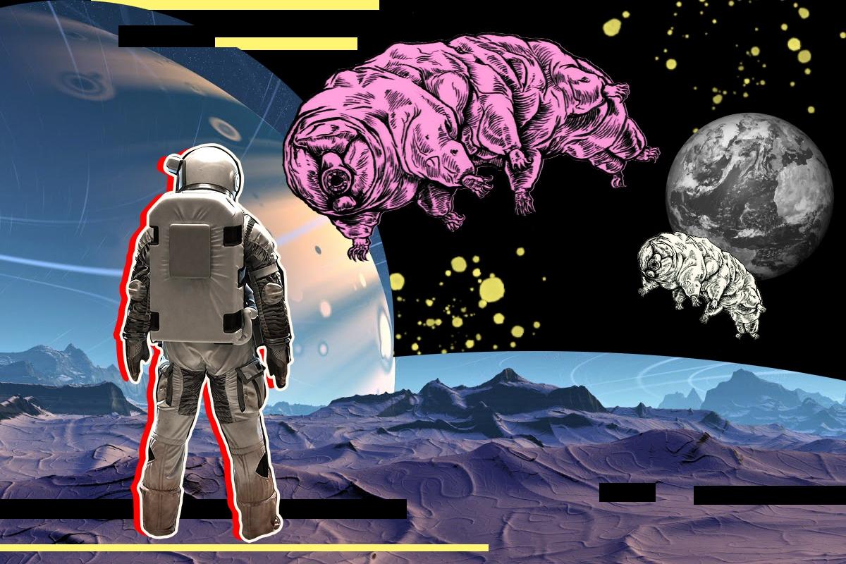 Почему ученые наконец допустили существование внеземной жизни