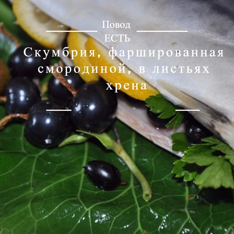 Скумбрия, фаршированная смородиной, в листьях хрена