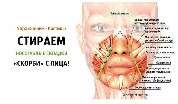 Упражнение «Ластик»: СТИРАЕМ носогубные складки «скорби» с лица!