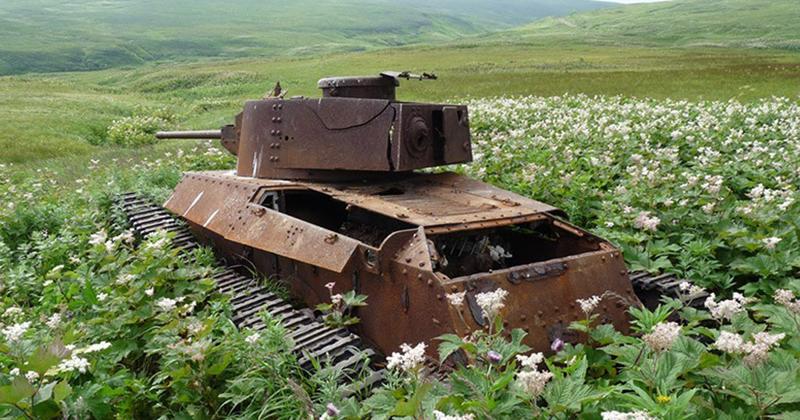 41 танк, захваченный природой