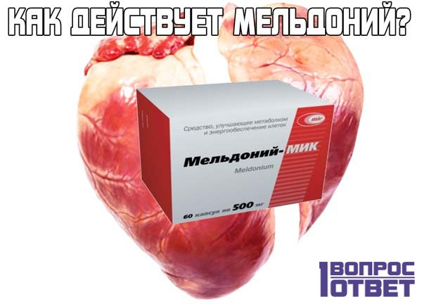Мельдоний: как действует этот препарат и для чего нужен?