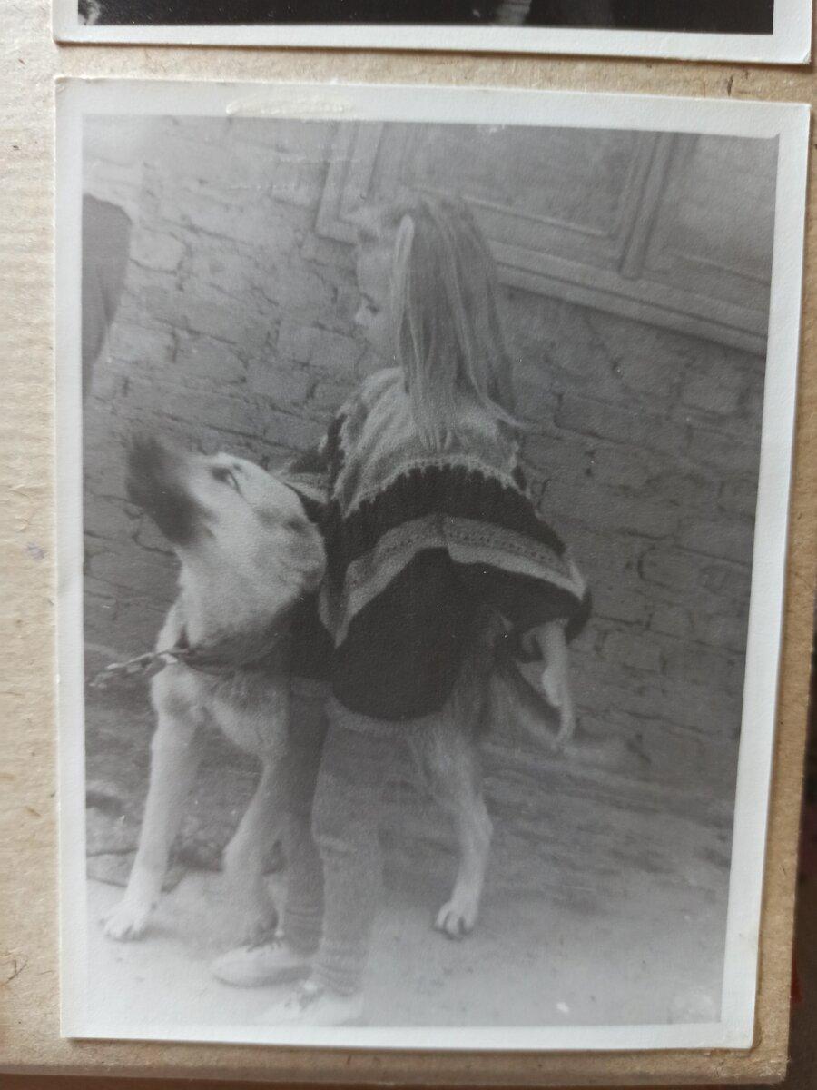 Вот такой я была малявкой, все собаки были мои)))