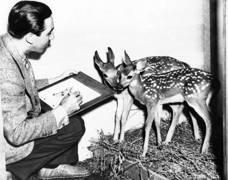 23 волшебные ретро фотографии из жизни студии Уолта Диснея