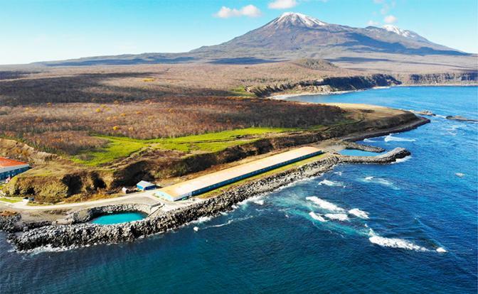 Ставка на острова: Кому придется делать харакири на Курилах