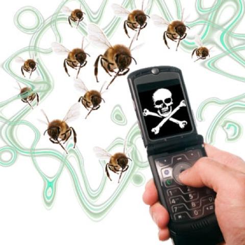 Что будет, если вымрут пчелы
